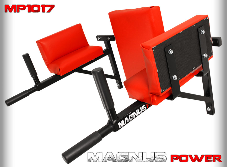 Dip handles for training Magnus Power MP1017