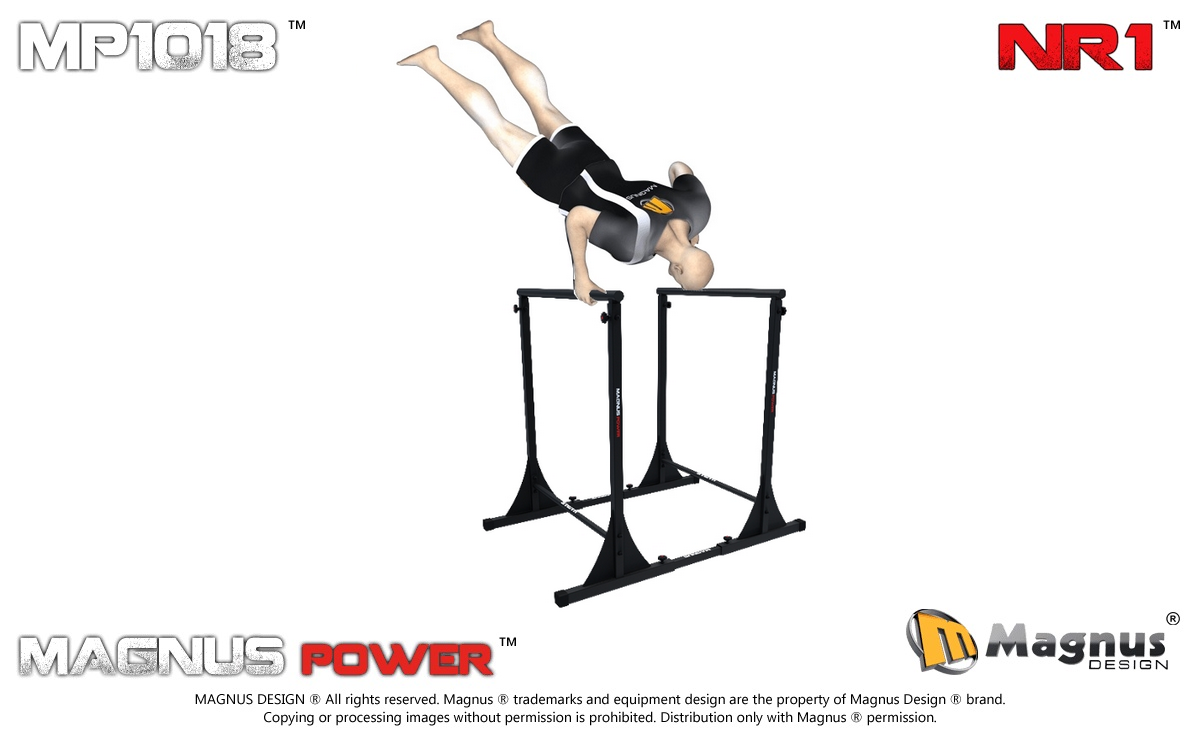 Multifunctional dip station for exercises Magnus