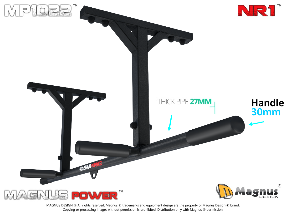 Pull up bars for home workout
